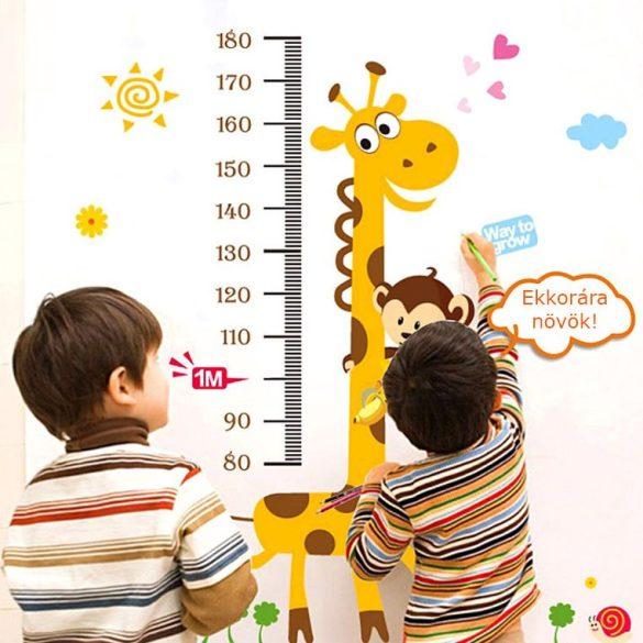 Zsiráf, majom, csiga magasságmérő
